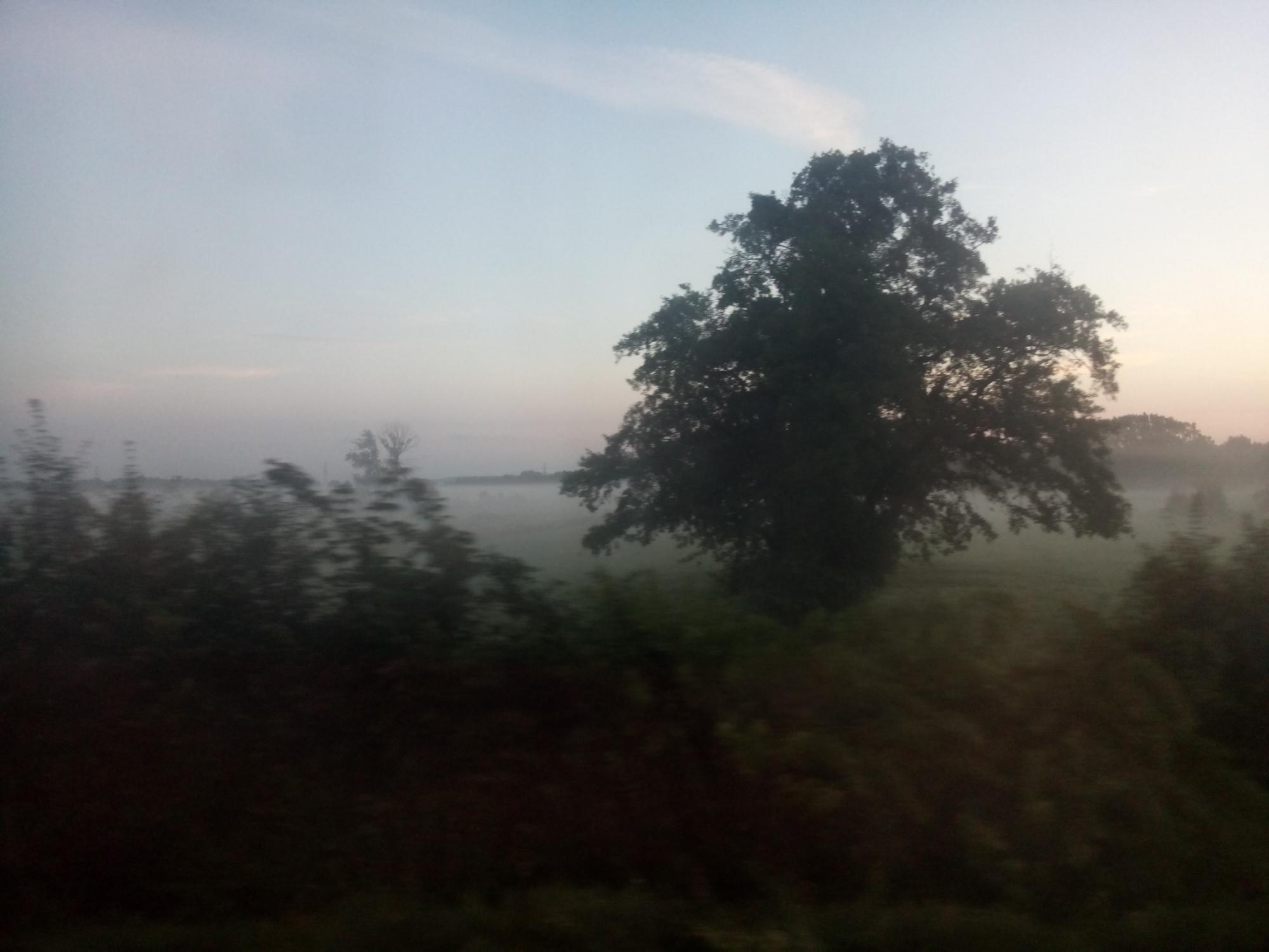 Fünf Uhr morgens liegt der Nebel auf dem Land.